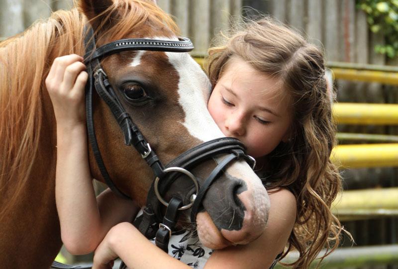 Mädchen umarmt ein Pferd